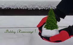 karácsonyi dekoráció karácsonyfa