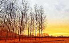 Egy napkelte színei...