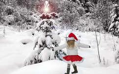 tél karácsony fenyő