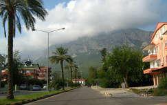 hegy út pálma felhő