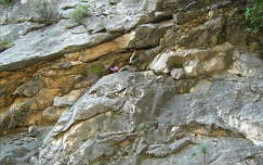 kövek és sziklák