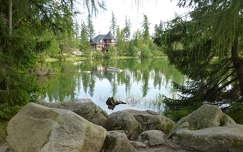 tükröződés tó kövek és sziklák
