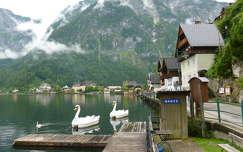 ausztria hattyú alpok hallstatt hegy tó