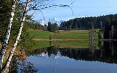 Ausztria, tó, erdő