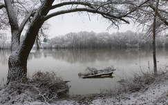 Duna-part, Leányfalu