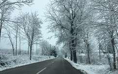 tél fa út