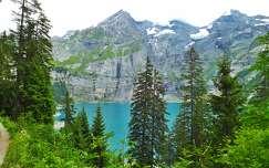 örökzöld hegy fenyő tó