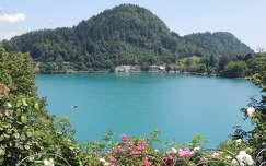 Szlovénia,Bledi tó,kilátás a szigetről