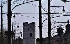 Debrecen, lámpaerdő
