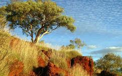 Karijini Nemzeti Park,  Ausztrália
