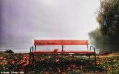 Ködös reggelen...