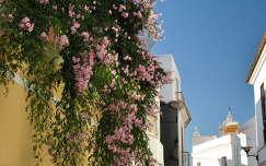 Lagos, Algarve, Portugália