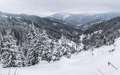 románia tél hegy erdély erdő kárpátok