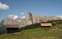 Fagunyhok a Dolomitokban. Olasz Alpok