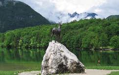 Szlovénia Bohinji-tó