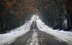 út a végtelenbe