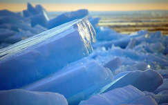 Jégtáblák