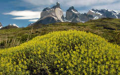 Torres del Paine, Patagónia, Argentína