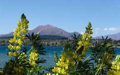 Wanaka, Új-Zéland