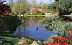 Tavasz a tónál