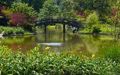 Japánkert, tavasz