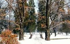 Miskolctapolca télen, Magyarország