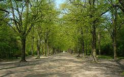 Erzsébet-park