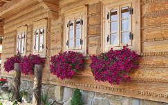 nyári virág ablak petúnia virágcsokor és dekoráció faház