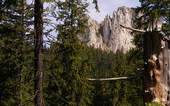 nagyhagymási hegység, Románia