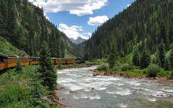 erdő folyó vonat