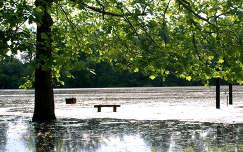 Mártély-holtág-áradás