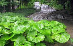 Fátyol-vízesés, Szalajka-völgye, Szilvásvárad