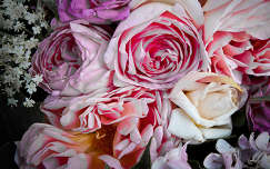 rózsa rózsák napfény napsütés szirom virág bodza levél rózsalonc