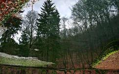 szalajka völgy víztükör erdő ősz