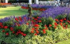 Park a Buckingham Palota előtt, London, Anglia
