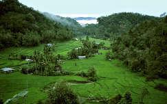 Szumátra, Indonézia