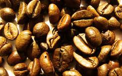 kávé termény