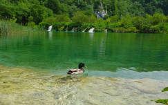 Horvátország, Plitvice