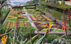 Botanikus kert Madeirán, Portugália