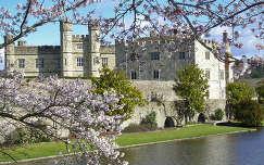 Anglia, Leed Castle