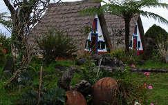 Madeirai házak