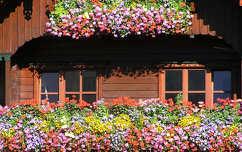 Ablak Virág Ausztria