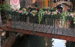 Egy híd Velencében