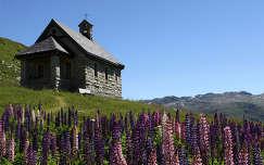 Pihenő ház Svájc