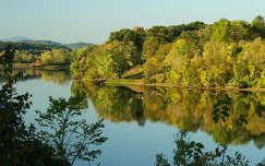 erdő tükröződés folyó ősz