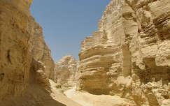 Izrael Homok sivatag 2006