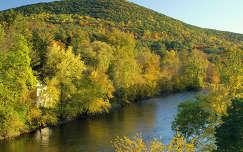 erdő folyó hegy ősz
