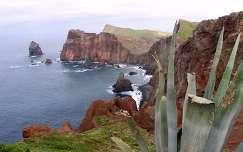 Madeira sziklái