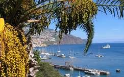 Funsal kikötője, Madeira, Portugália