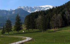 Ausztriai hegyi út
